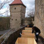 Grundierung des Holzes gegen Feuchtigkeit