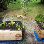 Die 3 bepflanzten Beete